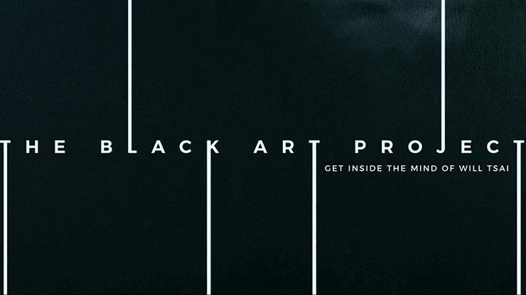 BLACK ART PROJECT--2 DVD SET