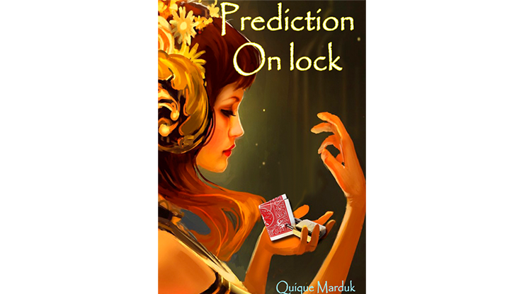 PREDICTION ON LOCK--BICYCLE, RED
