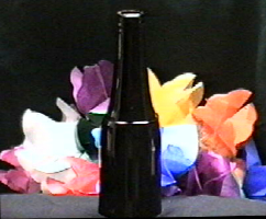 BOTANNICAL BOTTLE
