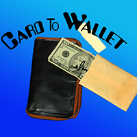 CARD TO WALLET--ZIPPER