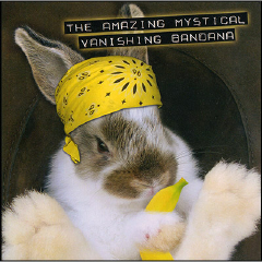 AMAZING MYSTICAL VANISHING BANDANA