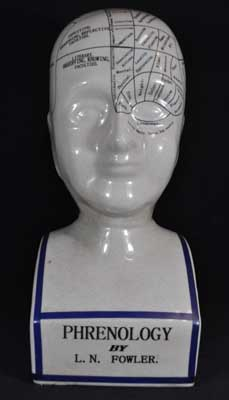 "PHRENOLOGY HEAD, PORCELAIN-- 16"" H X 7"" W"