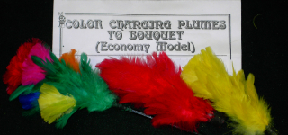 COLOR CHANGING PLUMES TO BOUQUET--MINI