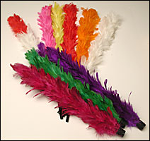 COLOR CHANGING PLUMES--ECONOMY