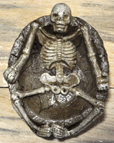 SKELETON IN CHANGE DISH